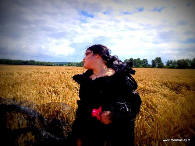 Vid o saclay une veuve au milieu d un champ de bl - Comment surprendre sa copine ...